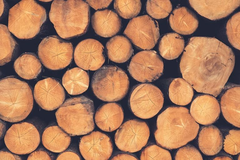 oakwoode fresh cut logs